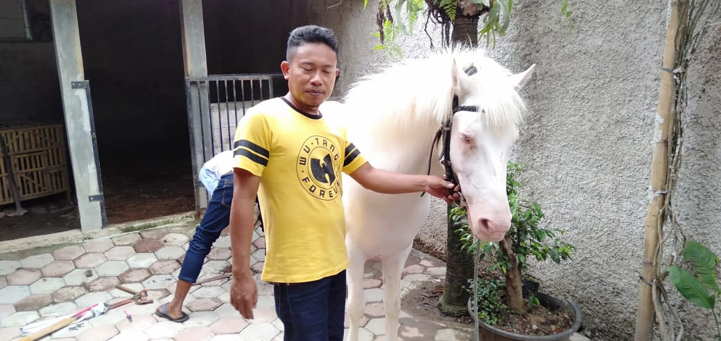 Parman (35), warga Desa Jaya Mukti Kecamatan Cikarang pusat Kabupaten Bekasi pemilik Alfaruk si Kuda Putih