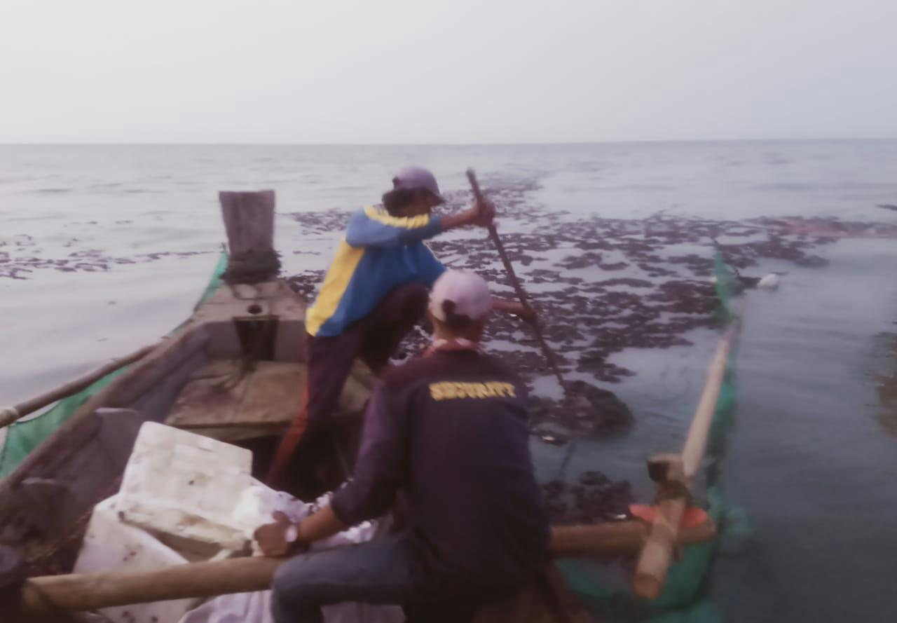 Nelayan Desa Pantai Bahagia Kecamatan Muaragembong sedang membersihkan tumpahan minyak mentah yang diduga berasal dari pipa Pertamina yang bocor. Minggu (25/04/21).