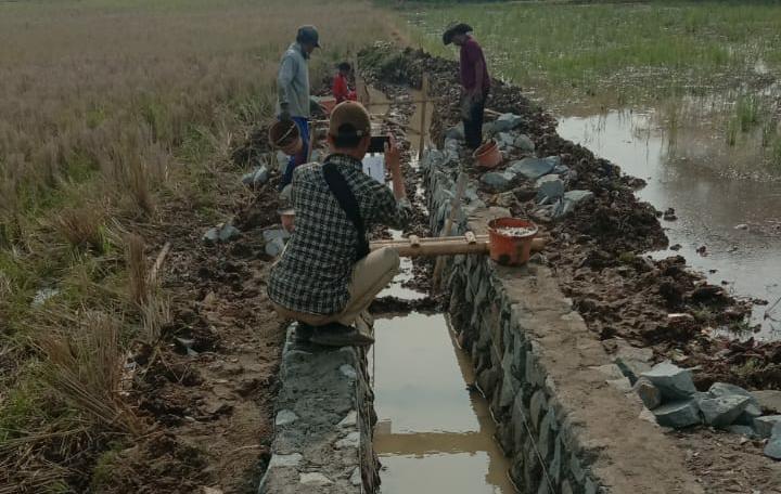 Kelompok Tani Waringin Jaya Makmur dan Baleker Makmur Realisasikan Anggaran Untuk Irigasi