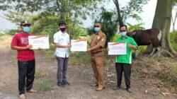 Idul Adha 1442 H, Coca-Cola Europacific Partners Indonesia Menyerahkan 143 Hewan Kurban