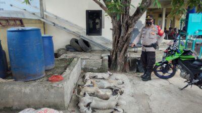 Apes, Maling Kambing di Muaragembong Tertangkap Warga